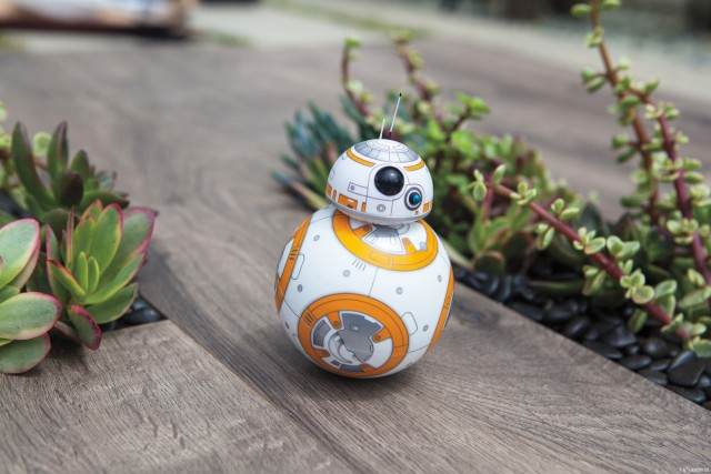bb8_still_garden_1_legal