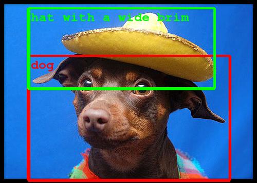 cachorro-reconhecimento