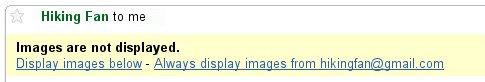 display_images