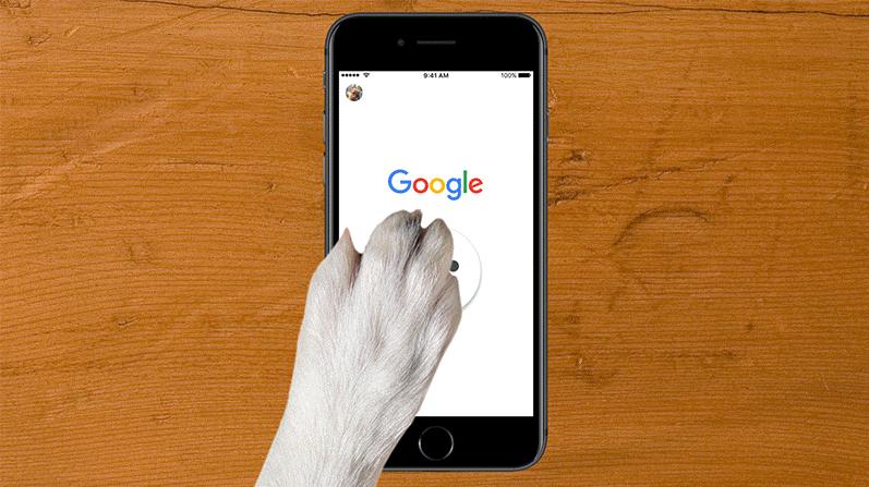 Google cancela brincadeiras de 1º de Abril (Dia da Mentira)