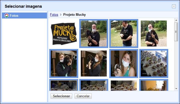 picasa web orkut 3 Orkut ganha importação de fotos do Picasa Web