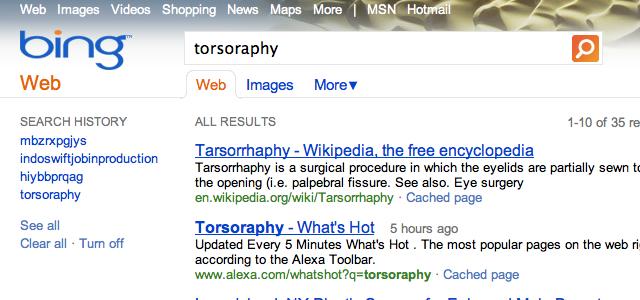 torsoraphy bing Bing está copiando nossos resultados de pesquisa, diz Google